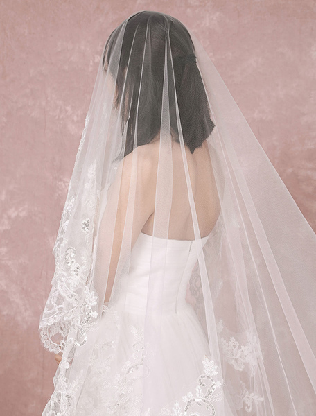 Cathedral Wedding Veil Tulle One-Tier Lace Applique Edge Waterfall Bridal Veil