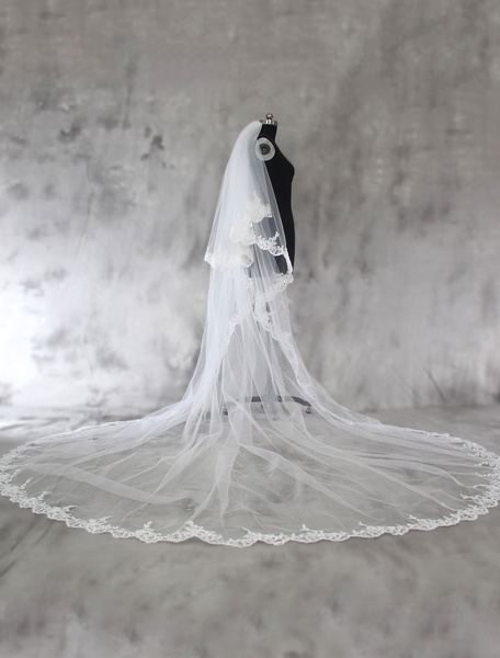 Cathedral Wedding Veil Lace Applique Edge White Bridal Veil