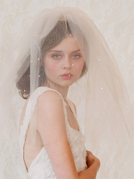 Champagne Wedding Veil Short Cut Edge Tulle One Tier Bridal Blusher Veil
