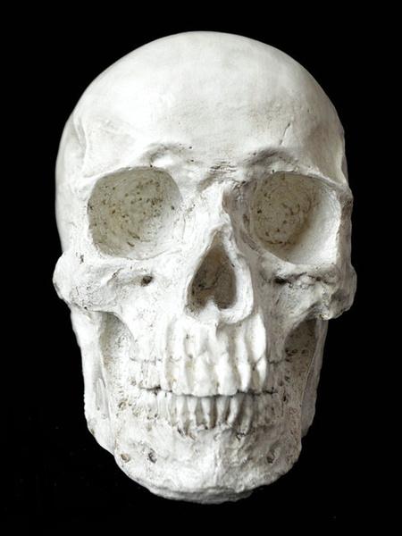 Halloween Dreadful Resin Skull Simulation Human Skull фото