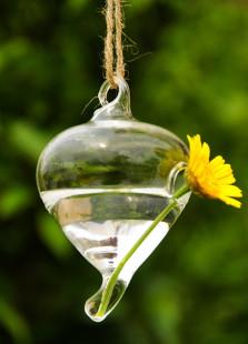 cute-q-shape-suspensible-flower-vase