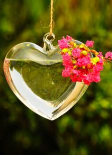 Sweet Transparent Heart Shape Suspensible Flower Vase