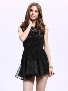 Sexy Black Lace Cut Out Crewneck Fashion Skater Dress