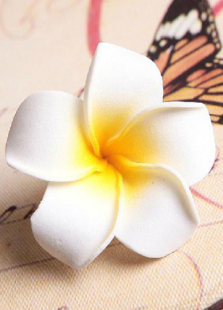 plumeria-rubra-pattern-wedding-decorations