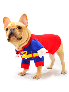red-superman-one-piece-costume-for-pets