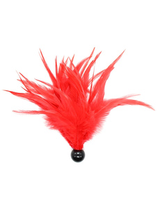 Red Feather Sex Toy