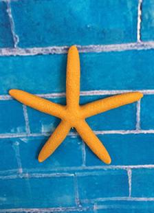 orange-beach-wedding-decors-resin-starfish