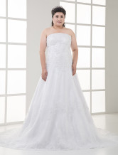 Lace Elegant White A-line Embroidery Satin Organza Plus Size Wedding Dress