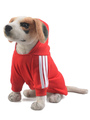 Red Dog Sweatshirt Hooded Cotton Pet Clothes Halloween 4292