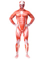 Halloween Monster Zentai Suit Adult Lycra Spandex Unisex Costume Cosplay 4292
