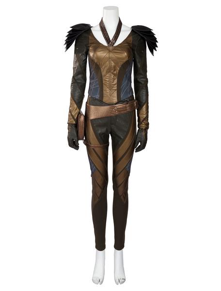 Flash Hawkgirl Halloween Cosplay Costume DC Comics Cosplay