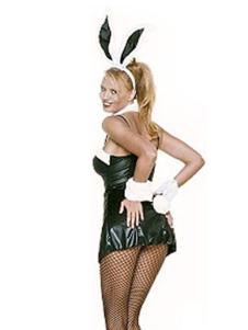 Sexy 82 Spandex 18 Nylon Womens Bunny Costume